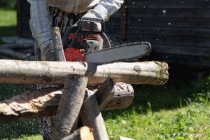 Tips Chainsaw For Cutting
