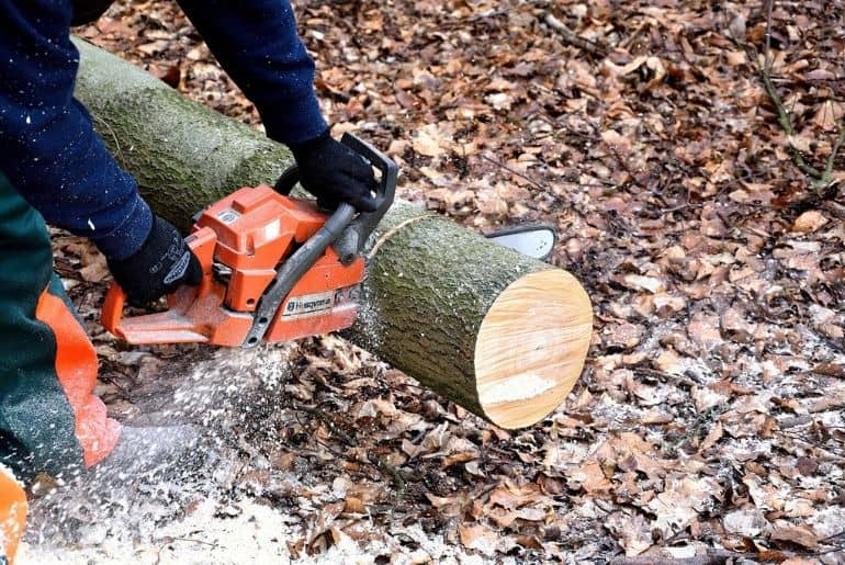 Best Top Handle Chainsaws 2021 – Reviews and Top Picks