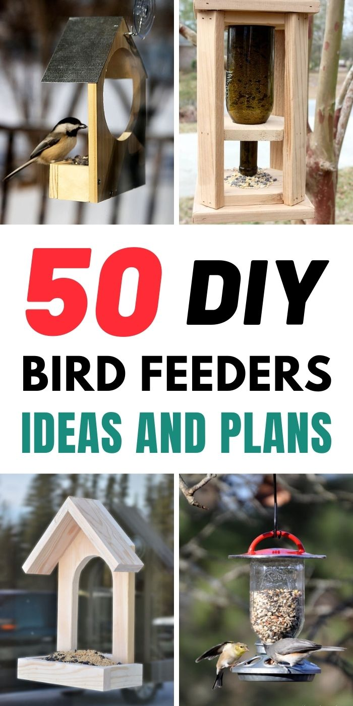 50 DIY Bird Feeders Ideas and Plans