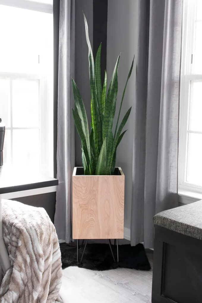 DIY Modern Planter