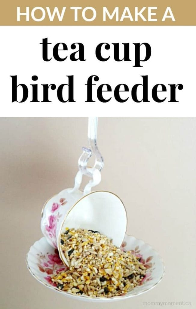 DIY Tea Cup Bird Feeder
