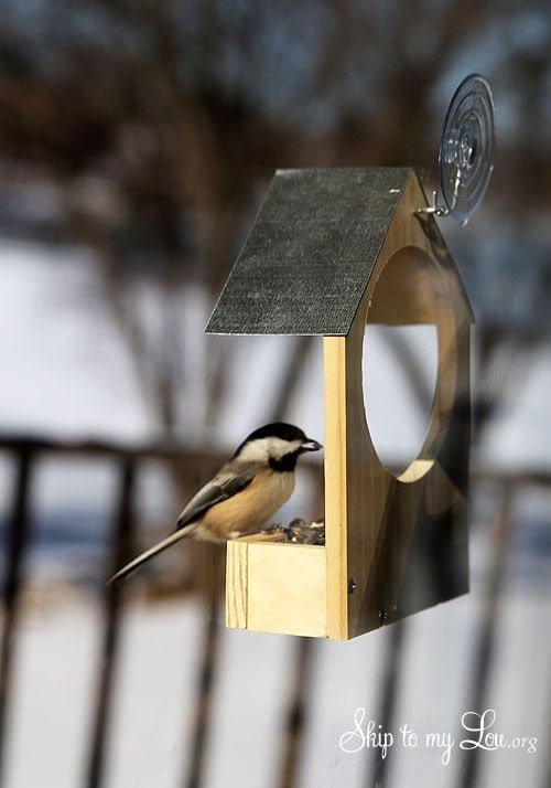 DIY Wooden Bird Feeder