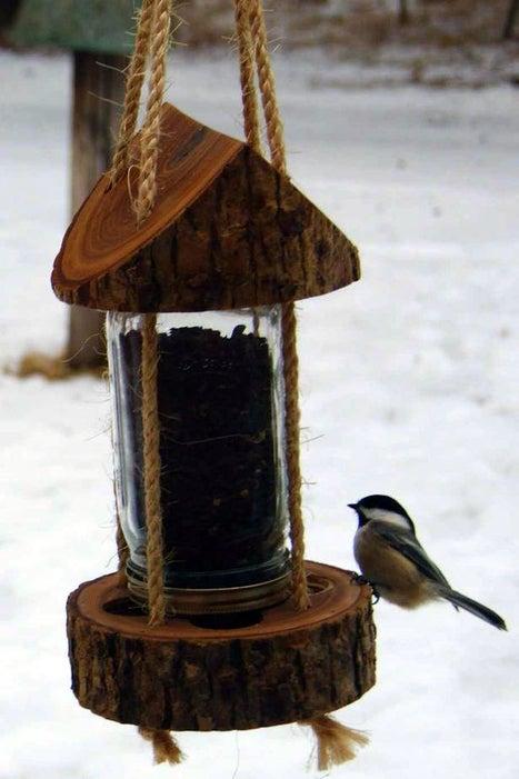 Mason Jar Log Bird Feeder