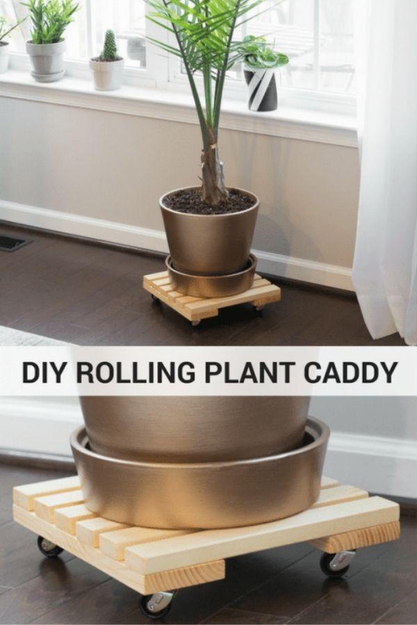 DIY Rolling Plant Caddy